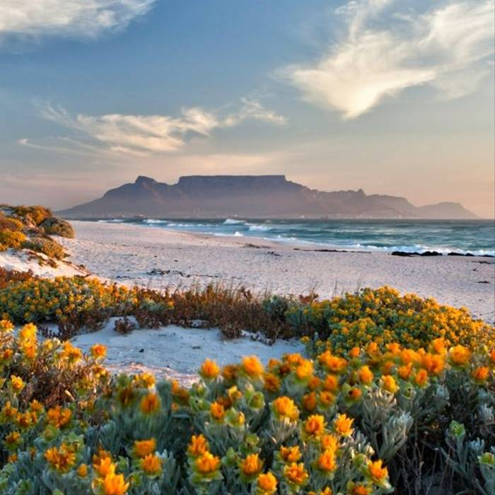 3 Day   Cape Town   Itinerary Desktop