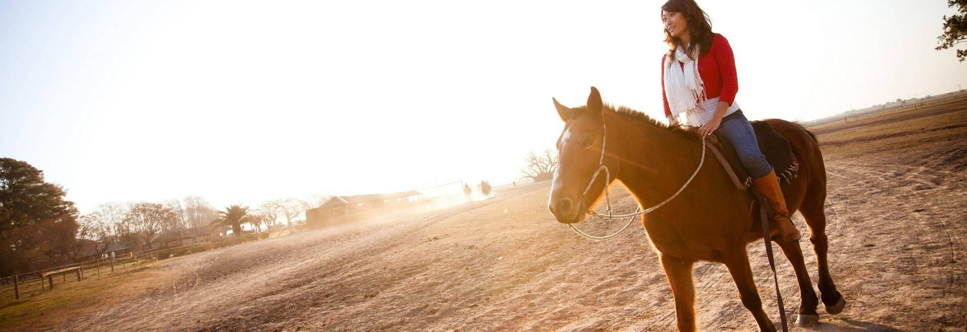 Argentina Buenos Aires Horse Ranch Sunset Traveller Rose-Attit Patel 2012-MG9241 Lg RGB.jpg