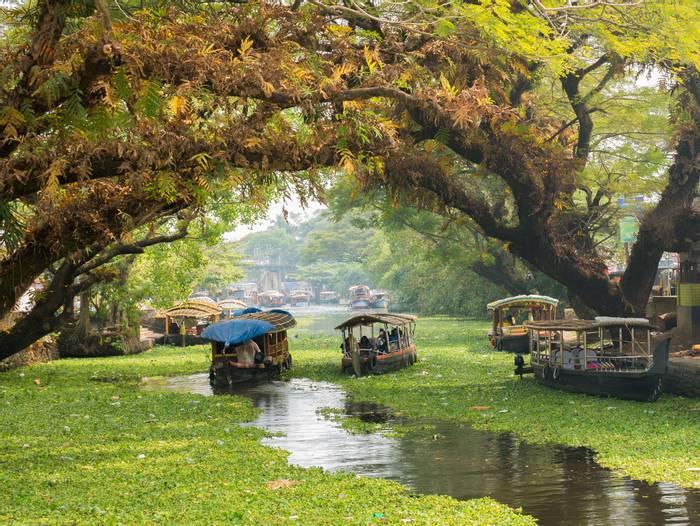Kerala-Backwaters,-India-shutterstock_1154918653.jpg