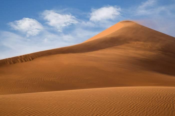 Dune 40, Namib Naukluft National Park © R Harvey