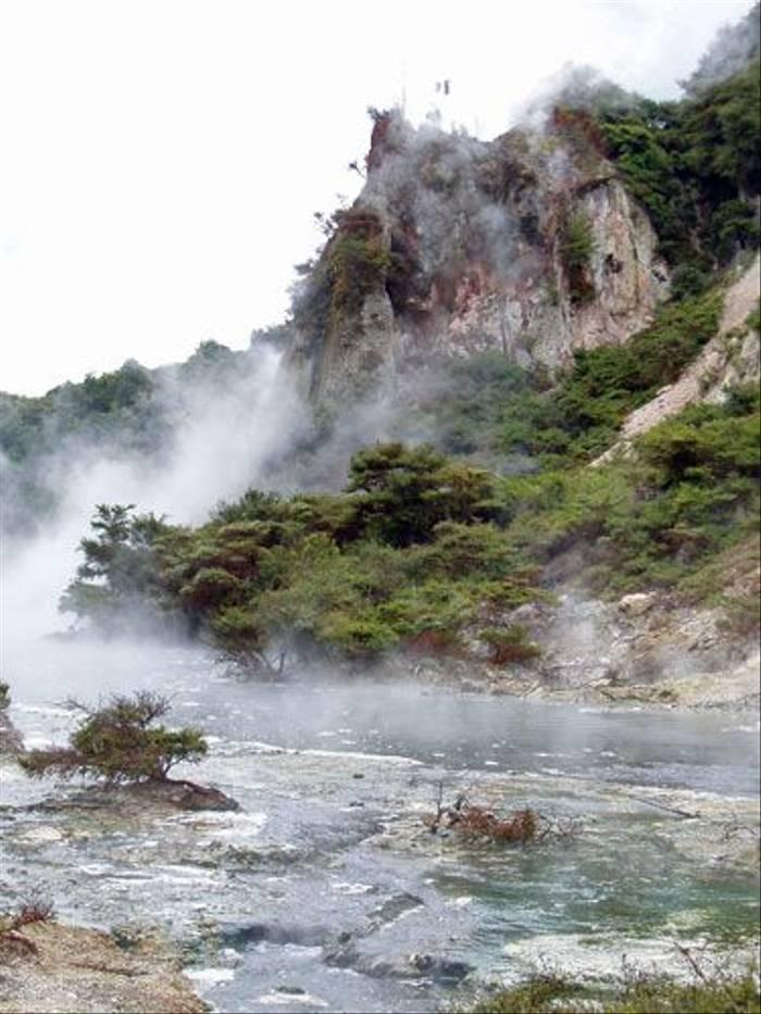 Waimangu volcanic valley (Mark Schofield)