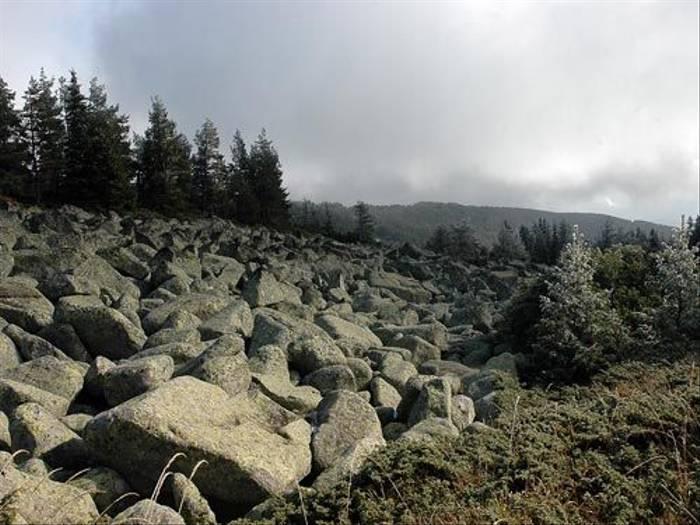 Mount Vitosha (David Morris)