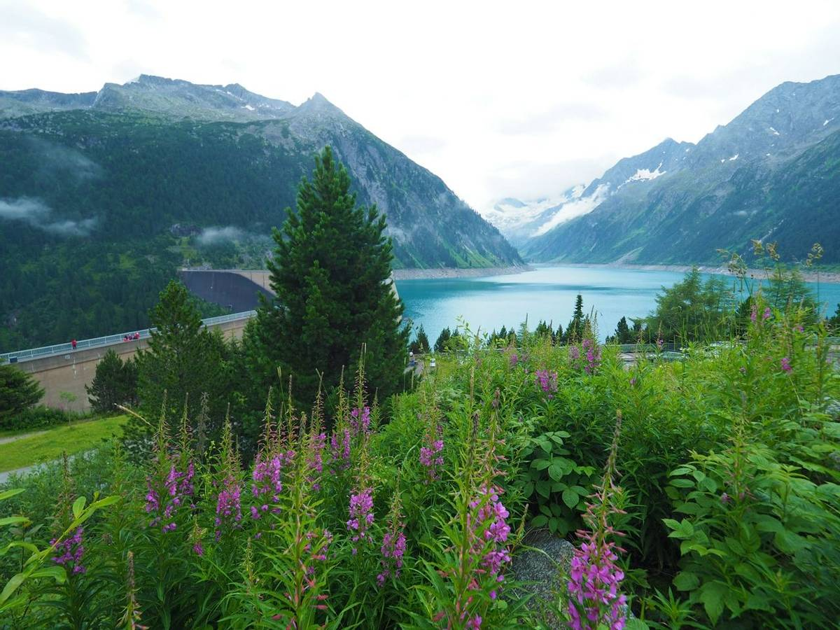 Austria - Mayrhofen - Family -AdobeStock_250202649.jpeg