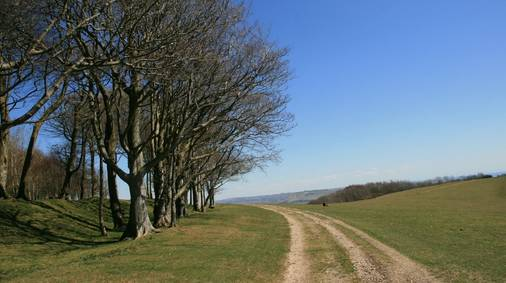 7-Night South Downs Gentle Walking Holiday