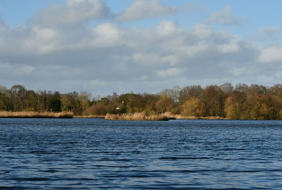 Fleet Pond, Hampshire shutterstock_1632731857.jpg