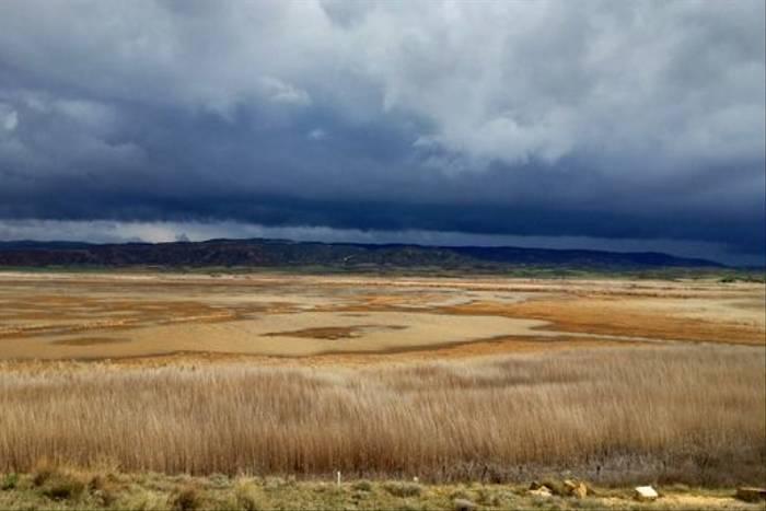 Navarra plains (Jose Ardaiz)