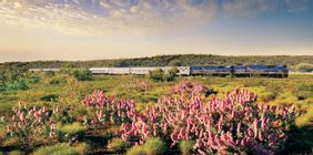 Indian Pacific & Vineyards of Margaret River