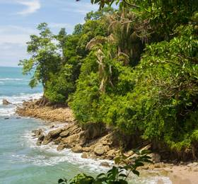 Travel to Manuel Antonio National Park