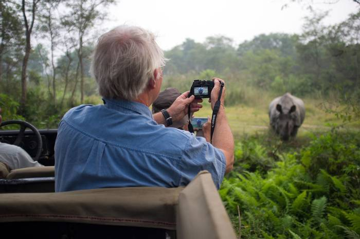 Indian rhinoceros (2).jpg