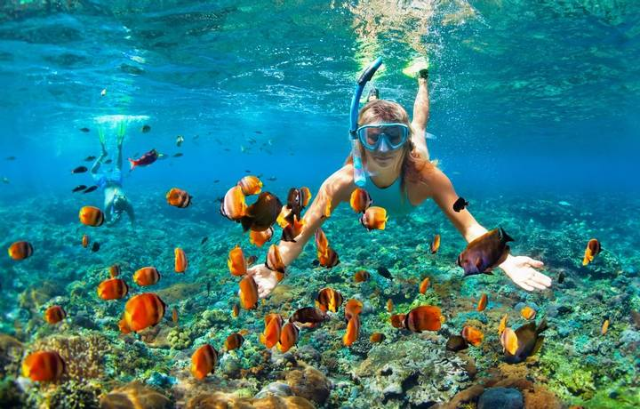 Happy family - couple in snorkeling masks dive deep underwater with tropical fishes in coral reef sea pool. Travel lifestyle…