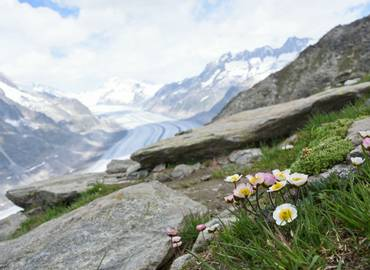 Valais - Highlights of the Swiss Alps
