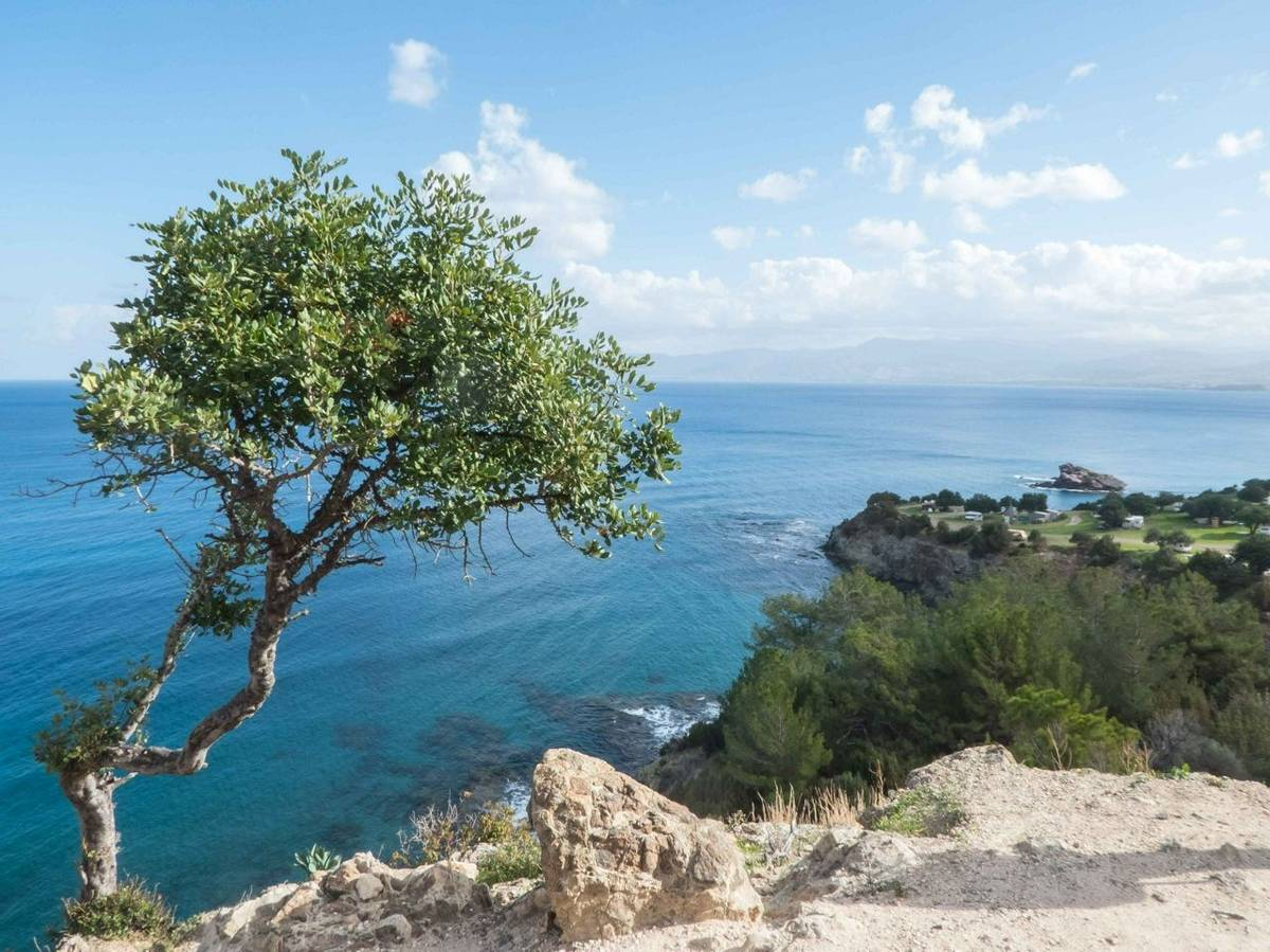 View of the Chrysochou Bay (Lisa Williamson)