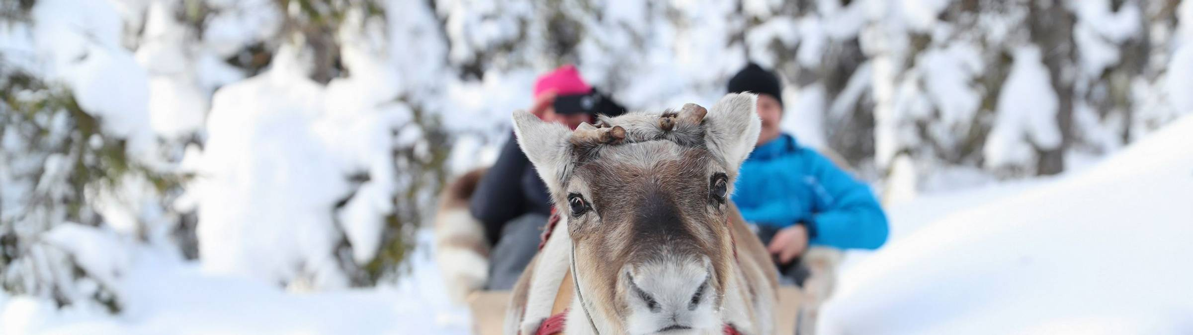 Ruka, Kuusamo   Credit Harri Tarvainen And Visit Finland