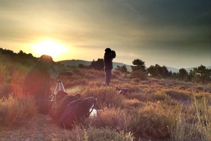 Dawn in Navarra (Jose Ardaiz)