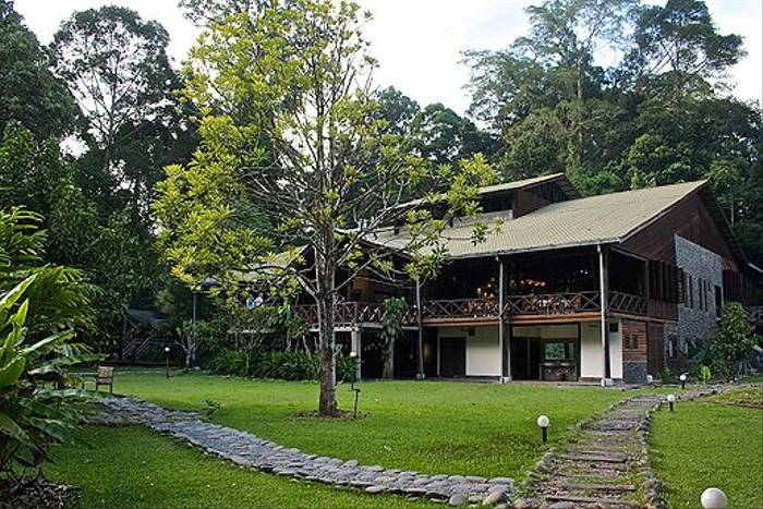 Borneo Rainforest Lodge (Dani Free)