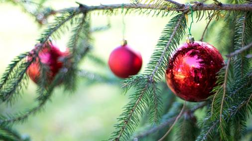 4-Night Northumberland Christmas & New Year Guided Walking Holiday