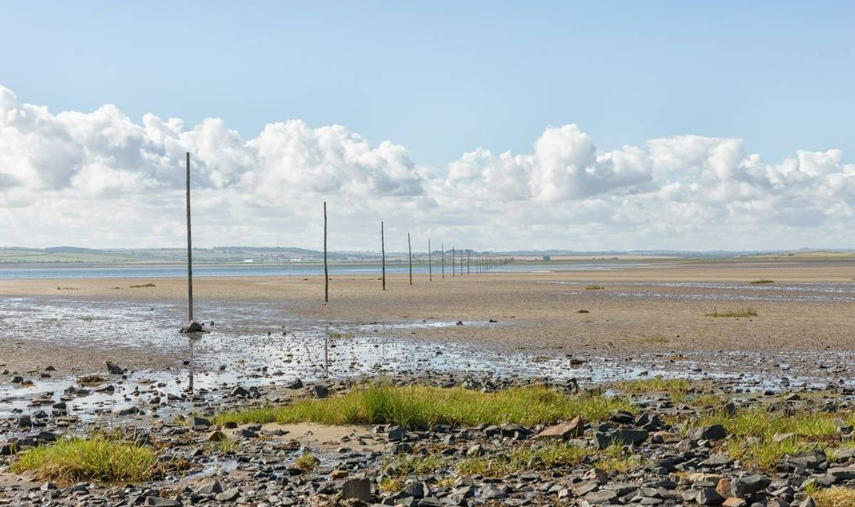 waymarking poles stretching across the causeway at Holy Island in Northumberland showing a safe route for walkers.