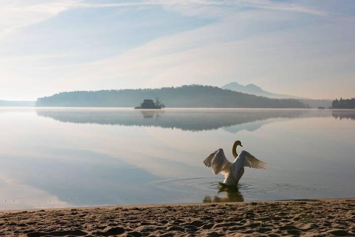 Lake Mácha