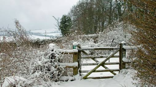 3-Night South Downs Christmas Guided Walking Holiday
