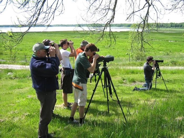 Birding at Lake Fläcksjön (Daniel Green)