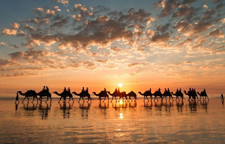 The sun is setting behind the camels and the camels are reflected on the wet sand of the beach at low tide.