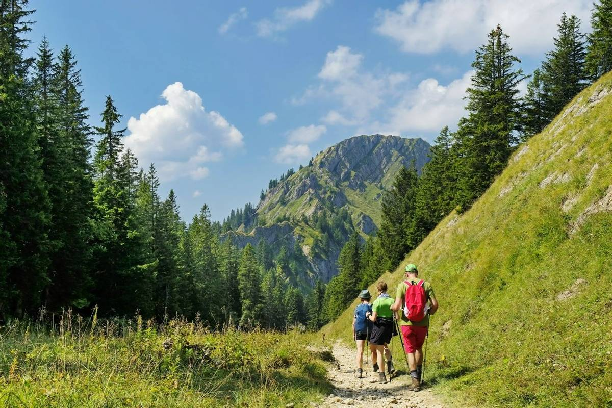 Family_AdobeStock_221988666_Alps_walking.jpeg