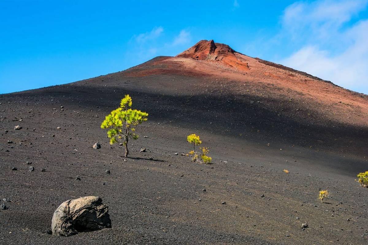 View of the Arenas Negras near volcano Teide, Teide National Park, Tenerife, Canary Islands, Spain