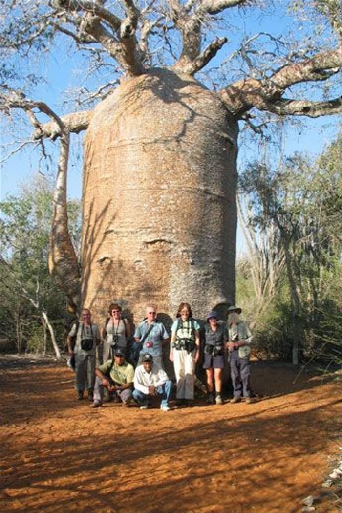 Naturetrek group at Raniala