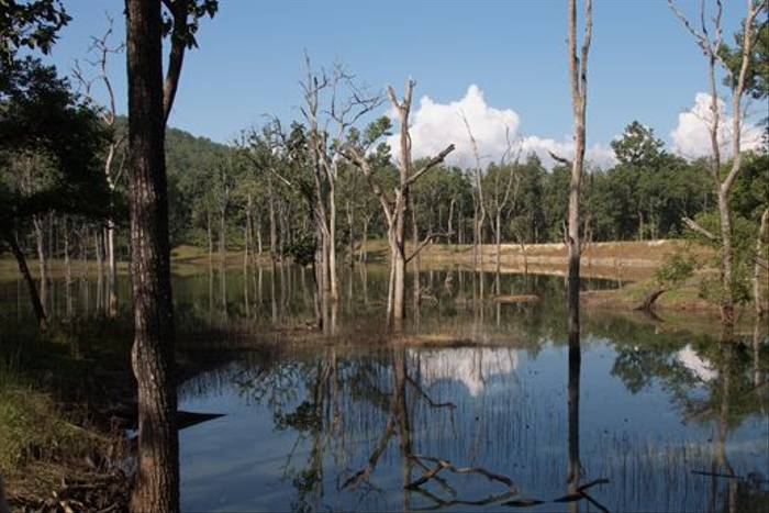 Lake in Pench National Park (Graham Cutts)
