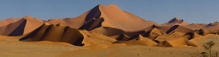 Dunes of the Namib Desert (Simon Shore)