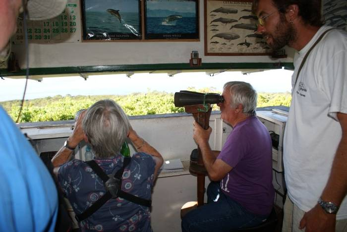 Visiting Antero Soares (Ed Drewitt)