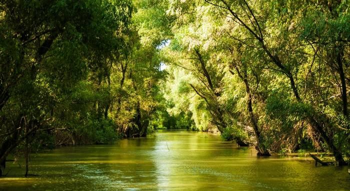 Danube Delta, Romania shutterstock_776928223.jpg