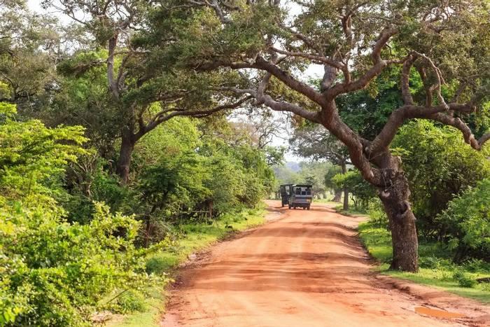 Yala National Park, Sri Lanka shutterstock_614853668.jpg