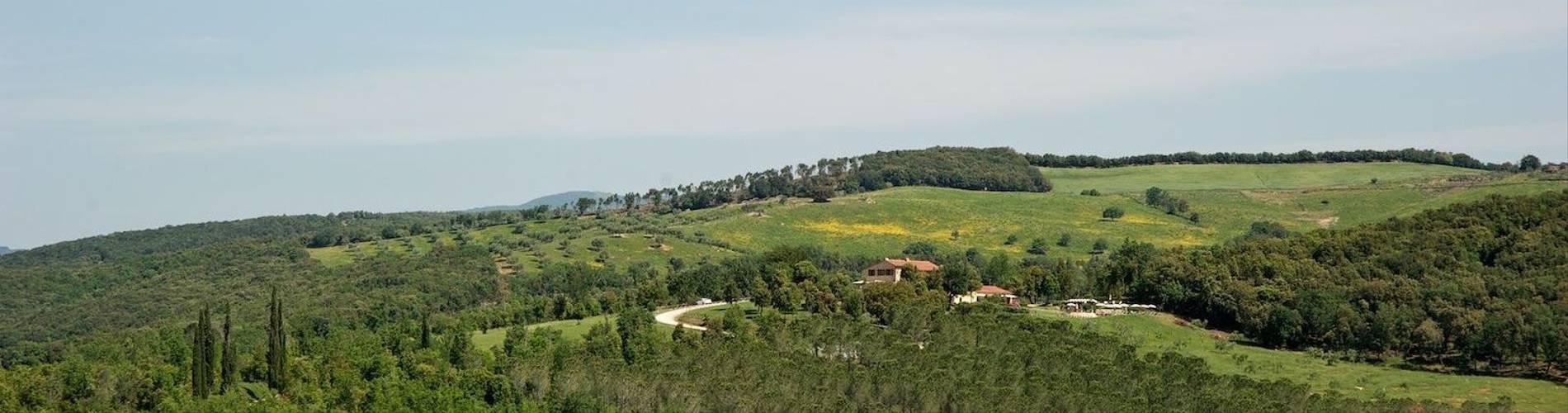 External area around Tenuta Casteani.jpg