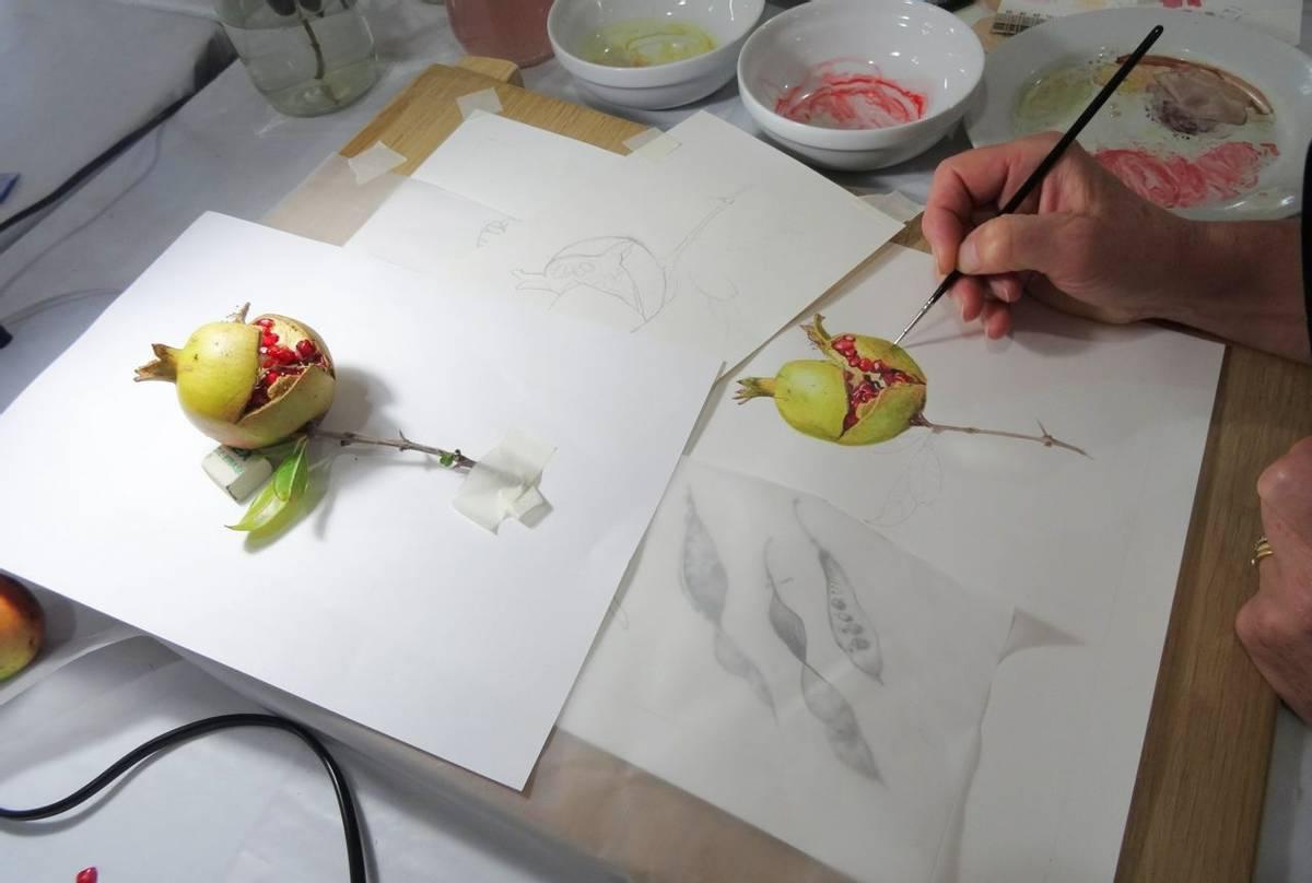 Botanical_painting (2).JPG