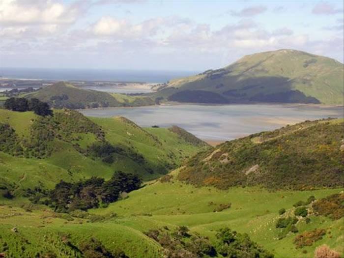 Otago Peninsula (Steve Wakeham)