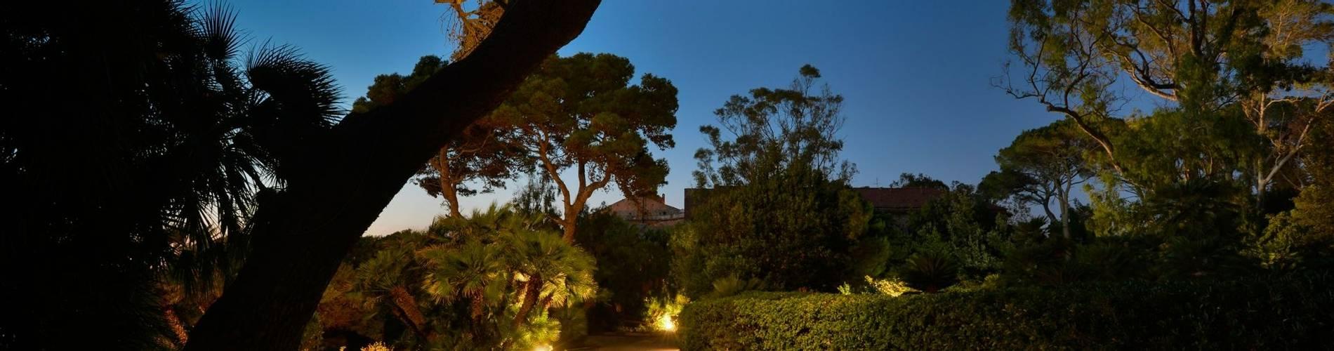 Palazzo Belmonte 19.jpg
