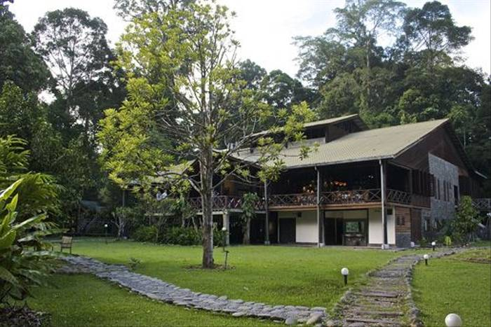 Borneo Rainforest Lodge (Dani Free)