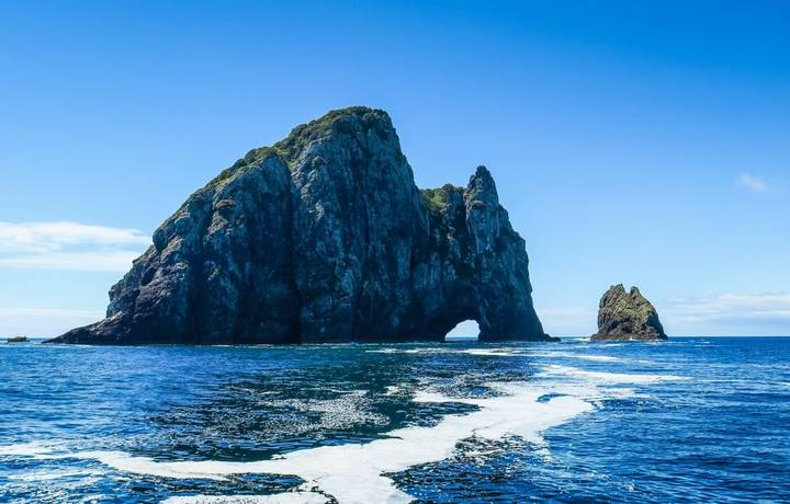 Cruising to the Hole in the Rock and with dolphins in New-Zealand