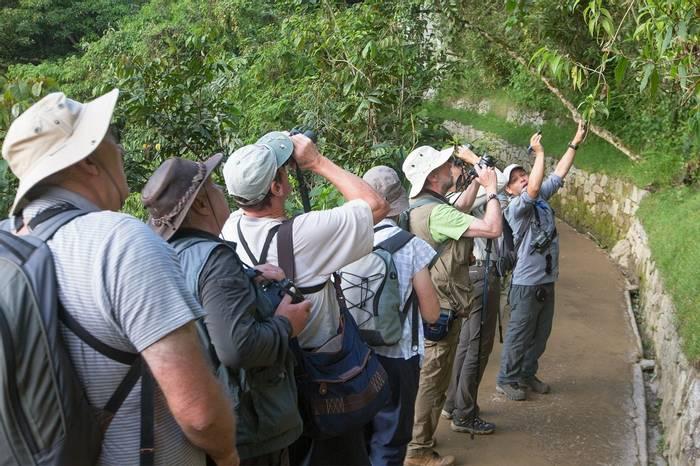 Birding Machu Picchu (Tom Ambrose)