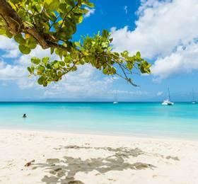 Pointe-à-Pitre (Guadeloupe)