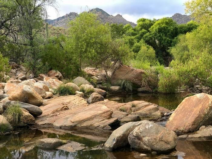 Sabino Canyon, Arizona_shutterstock_1410313208.jpg