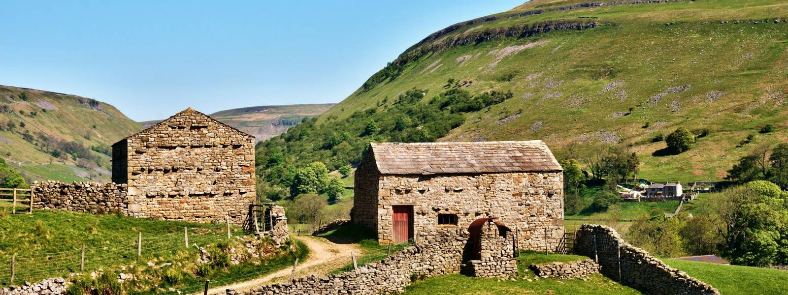 Quaint old stone barns surrounded by dry stone walls enclosing green fields on the gently rolling hills in Swaledale in the …