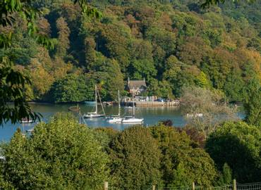 South Devon - A Wildlife Cruise on the River Dart (Day Trip)