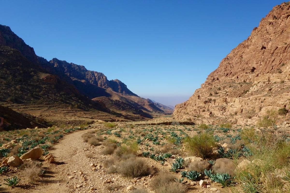 Canyon of Dana Biosphere Nature Reserve landscape near Dana historical village, Jordan, Middle East