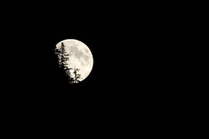 Moon rise (Paul Stanbury)