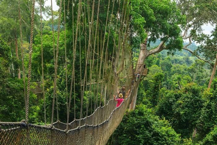 Canopy Walk, Kakum National Park, Ghana shutterstock_685919782.jpg