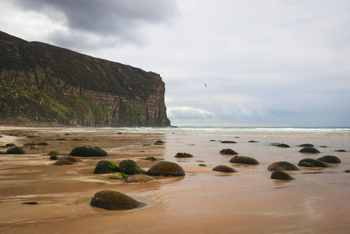 Orkney & Shetland - Orkney - AdobeStock_104012752.jpeg