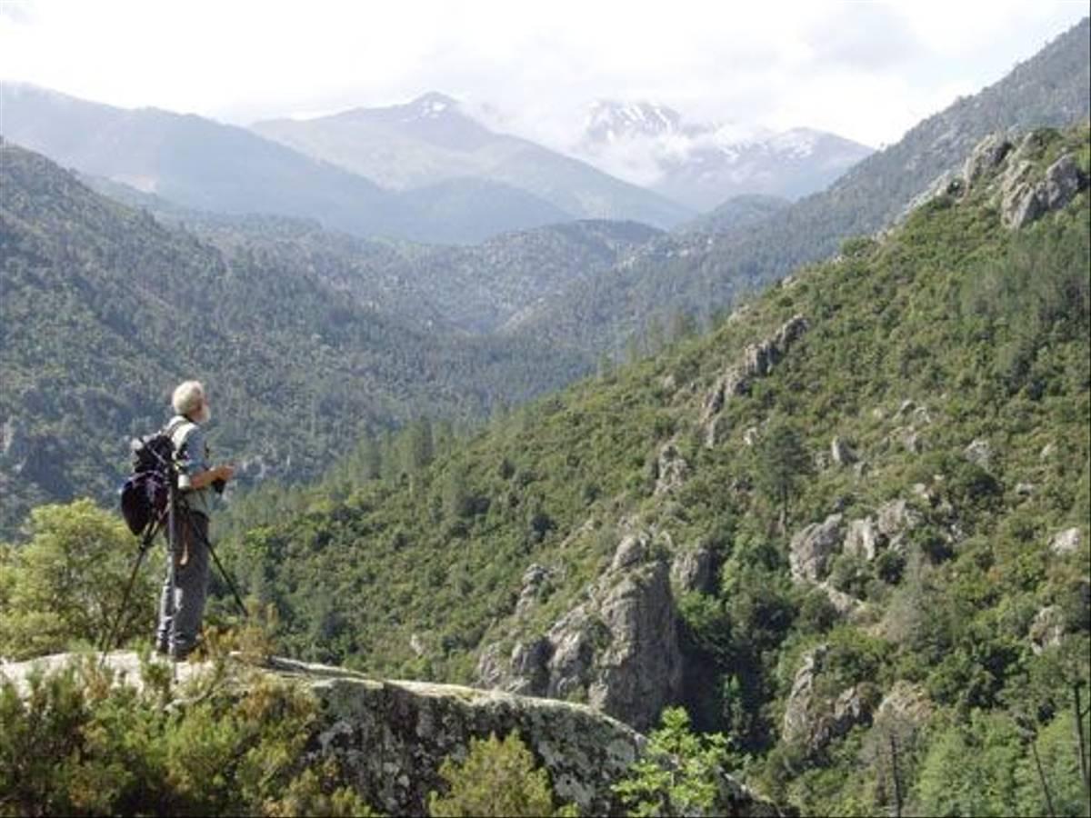 Corsica (Dennis Waite)