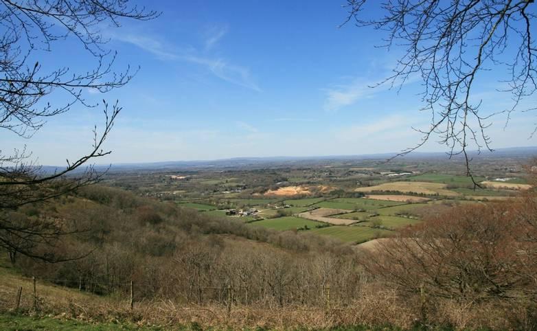 View northwards from Chanctonbury Ring.JPG
